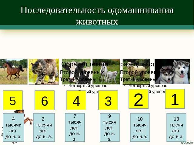 Последовательность одомашнивания животных 5 6 4 3 2 1 4 тысячи лет до н. э. 2...