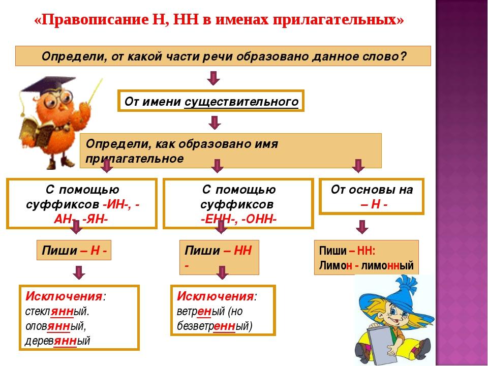 «Правописание Н, НН в именах прилагательных» Определи, от какой части речи об...