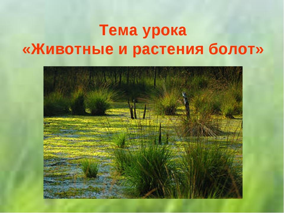 Тема урока «Животные и растения болот»