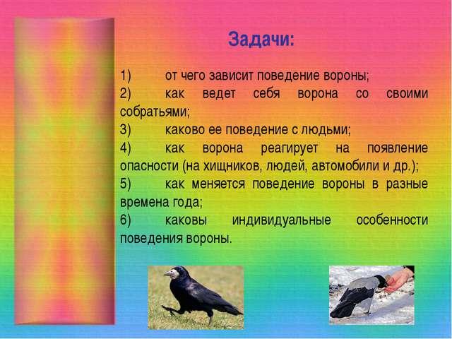 Задачи: 1)от чего зависит поведение вороны; 2)как ведет себя ворона со свои...