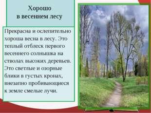 Хорошо в весеннем лесу Прекрасна и ослепительно хороша весна в лесу. Это теп