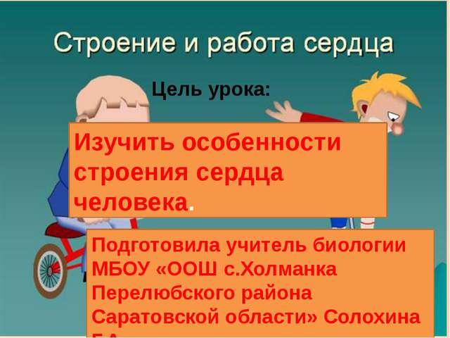 Цель урока: Изучить особенности строения сердца человека. Подготовила учитель...