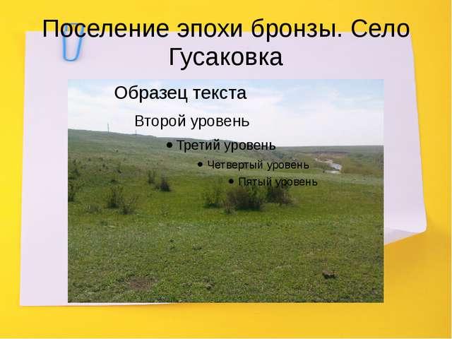 Поселение эпохи бронзы. Село Гусаковка