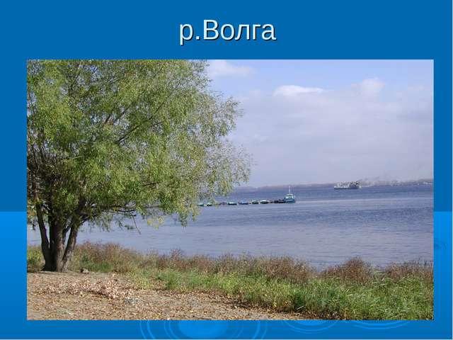 р.Волга