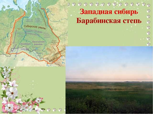 Западная сибирь Барабинская степь