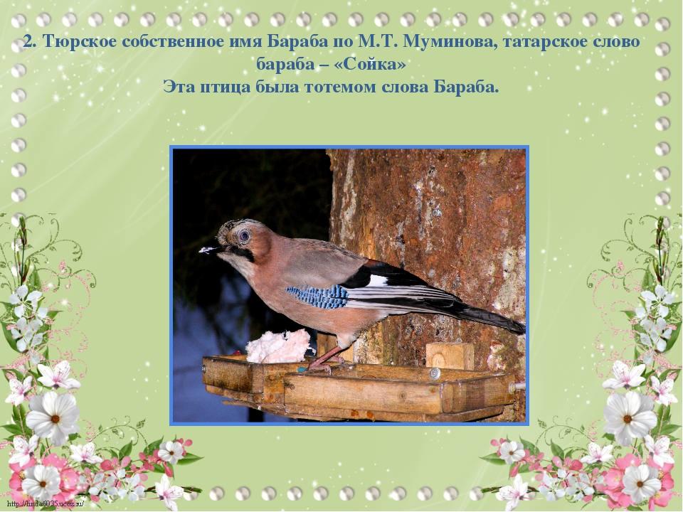 2. Тюрское собственное имя Бараба по М.Т. Муминова, татарское слово бараба –...