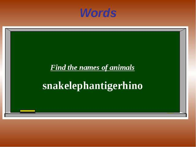 Words Find the names of animals snakelephantigerhino
