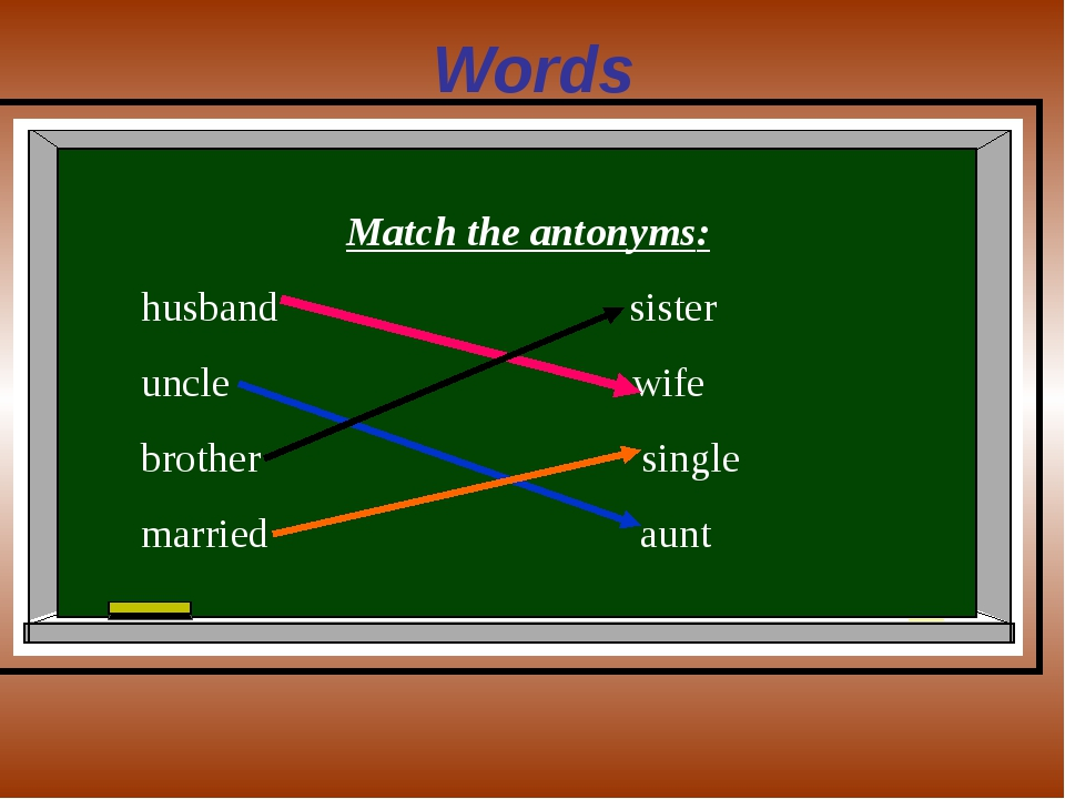 Words Match the antonyms: husband sister uncle wife brother single married aunt