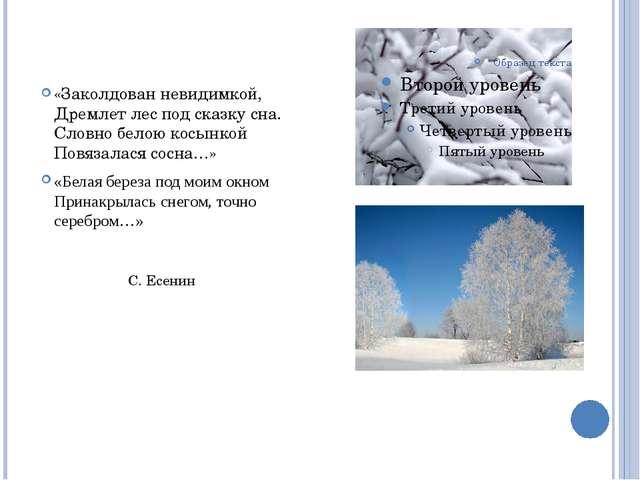 «Заколдован невидимкой, Дремлет лес под сказку сна. Словно белою косынкой Пов...