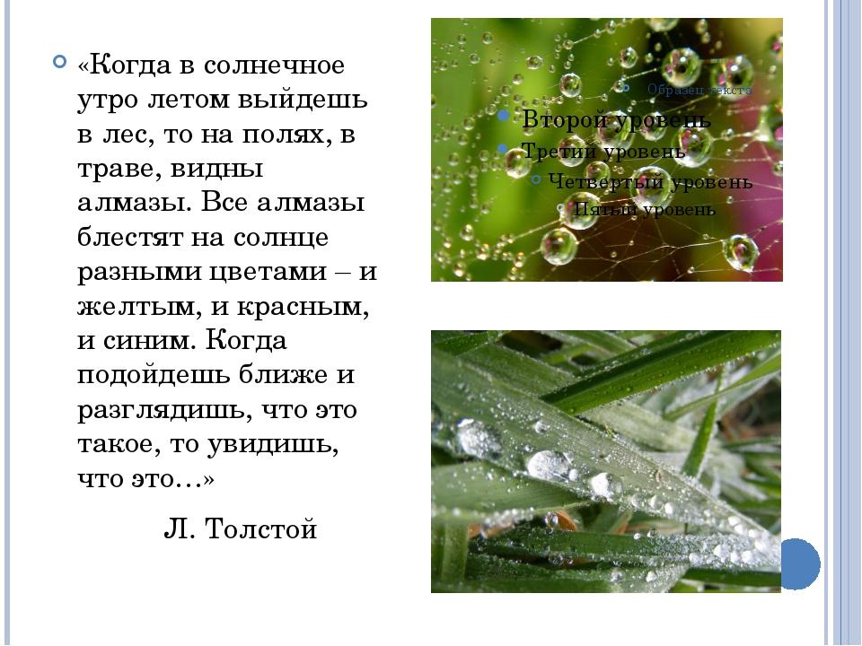 «Когда в солнечное утро летом выйдешь в лес, то на полях, в траве, видны алма...