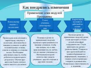 Как внедрялись изменения Применение семи модулей Программы Консультирование с