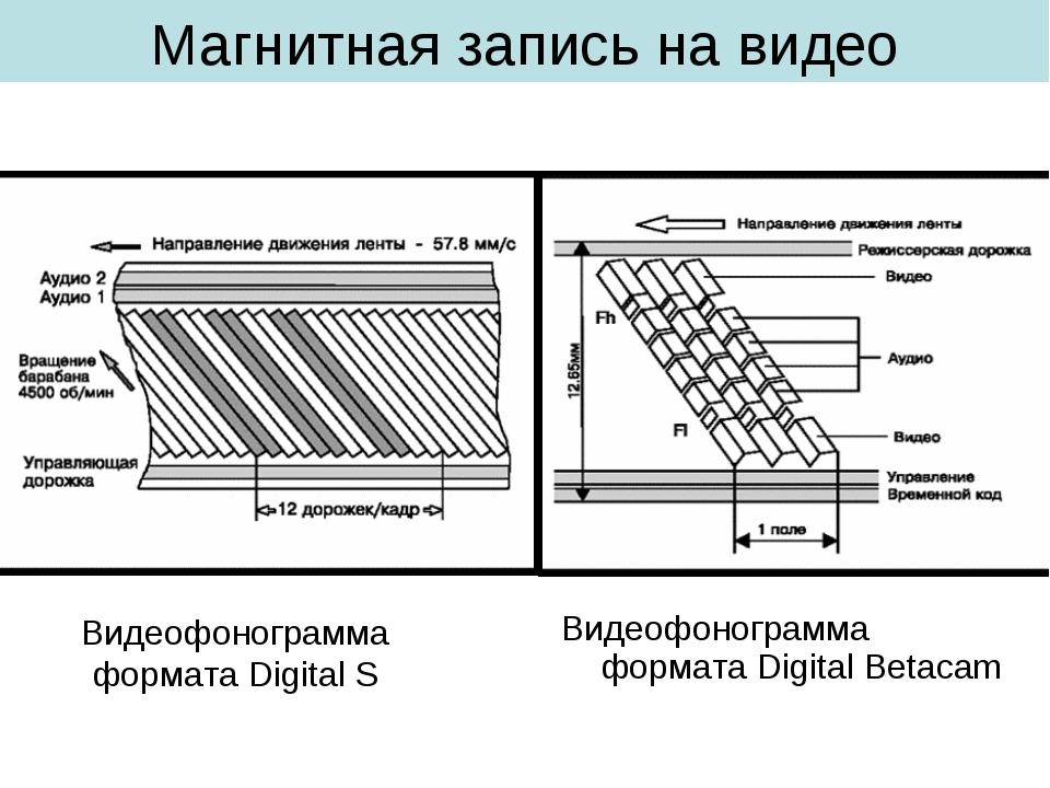 Магнитная запись на видео Видеофонограмма формата Digital Betacam Видеофоногр...