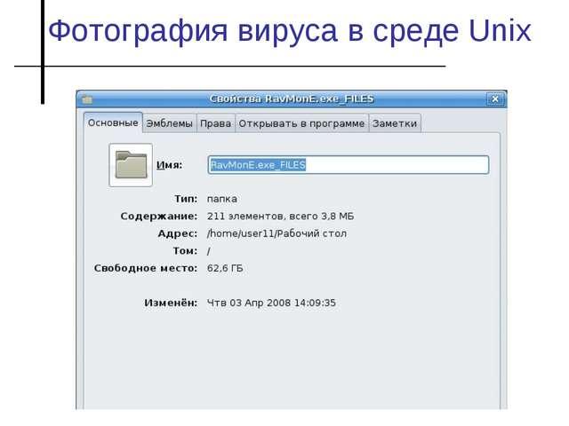 Фотография вируса в среде Unix