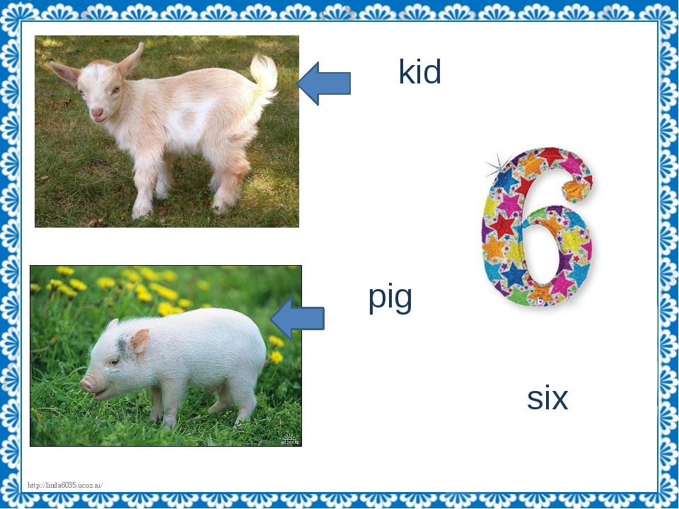 kid pig six http://linda6035.ucoz.ru/