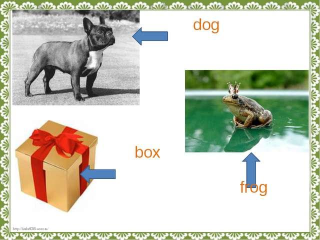 dog box frog http://linda6035.ucoz.ru/
