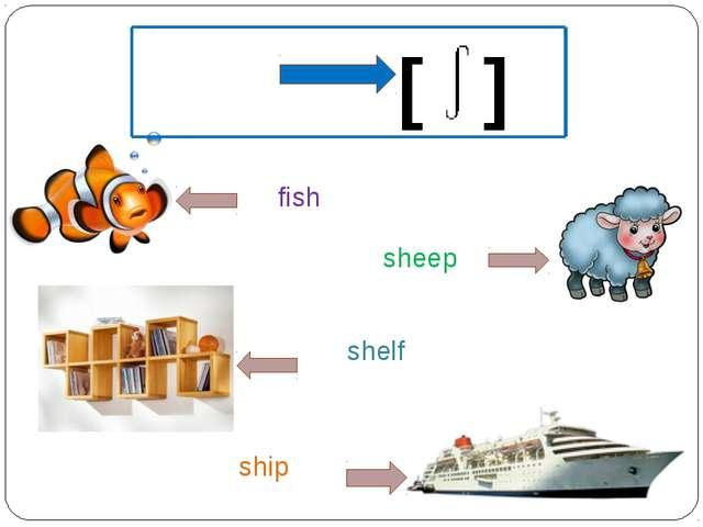 sh [ ] fish sheep ship shelf