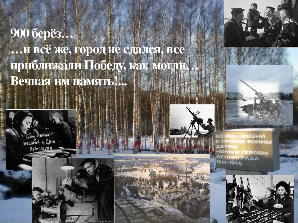 900 берёз… …и всё же, город не сдался, все приближали Победу, как могли… Вечн...