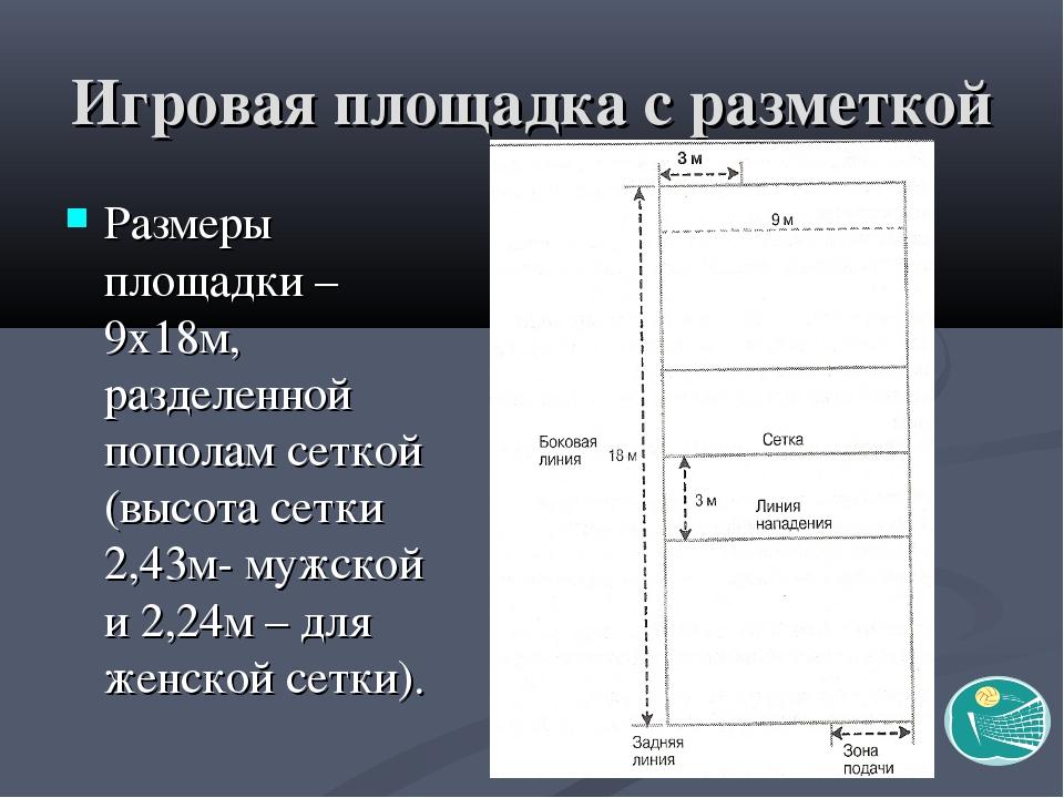 Игровая площадка с разметкой Размеры площадки – 9х18м, разделенной пополам се...