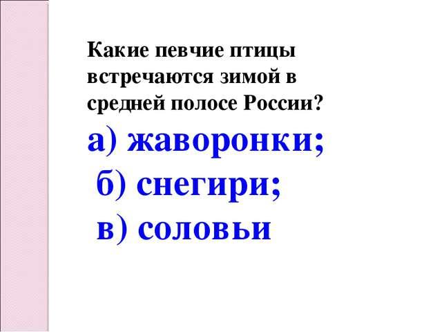 Какие певчие птицы встречаются зимой в средней полосе России? а) жаворонки; б...