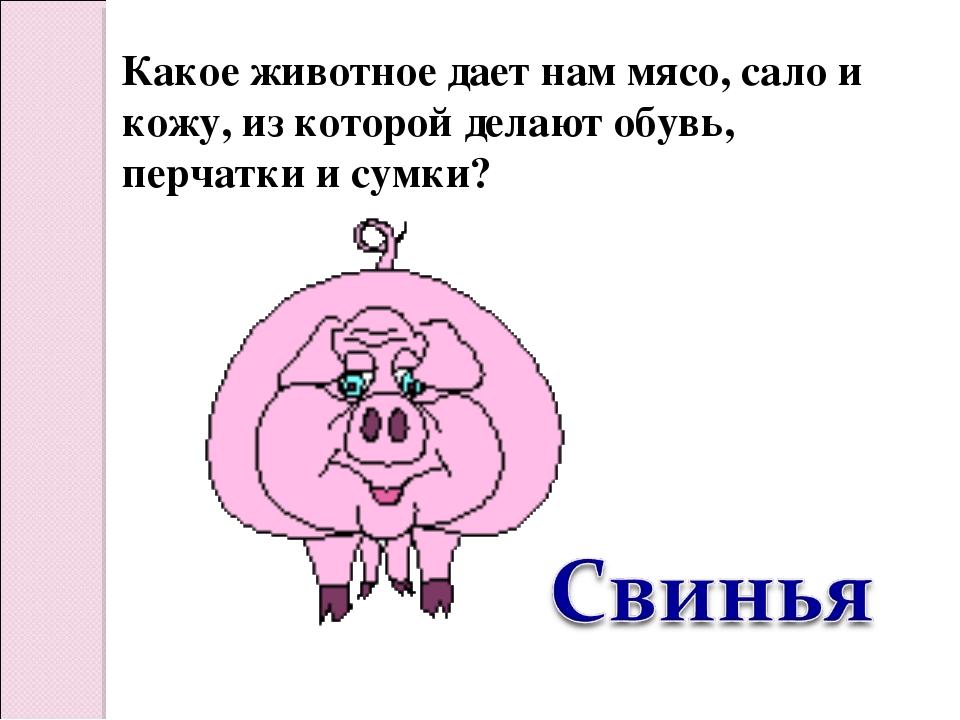 Какое животное дает нам мясо, сало и кожу, из которой делают обувь, перчатки...