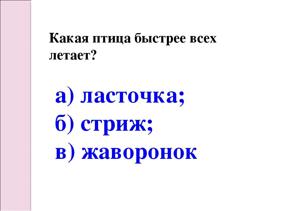 Какая птица быстрее всех летает? а) ласточка; б) стриж; в) жаворонок