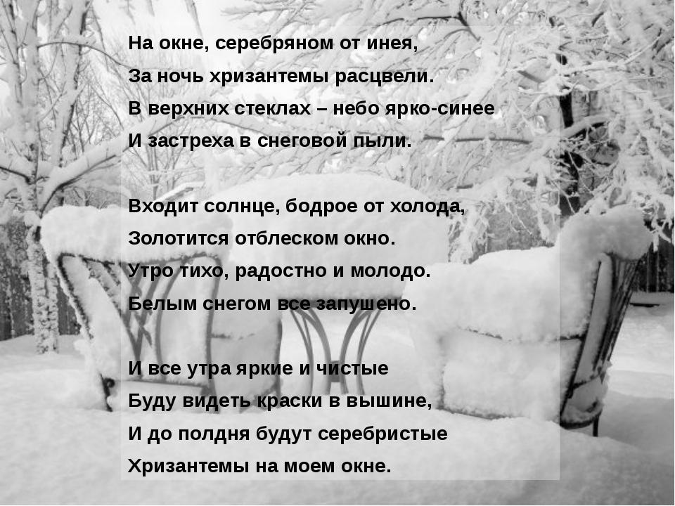 На окне, серебряном от инея, За ночь хризантемы расцвели. В верхних стеклах –...