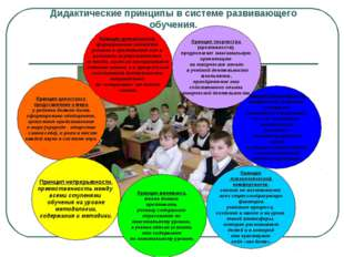 Дидактические принципы в системе развивающего обучения. Принцип целостного пр