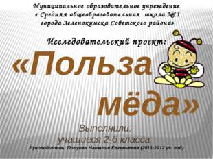 «Польза мёда» Муниципальное образовательное учреждение « Средняя общеобразов