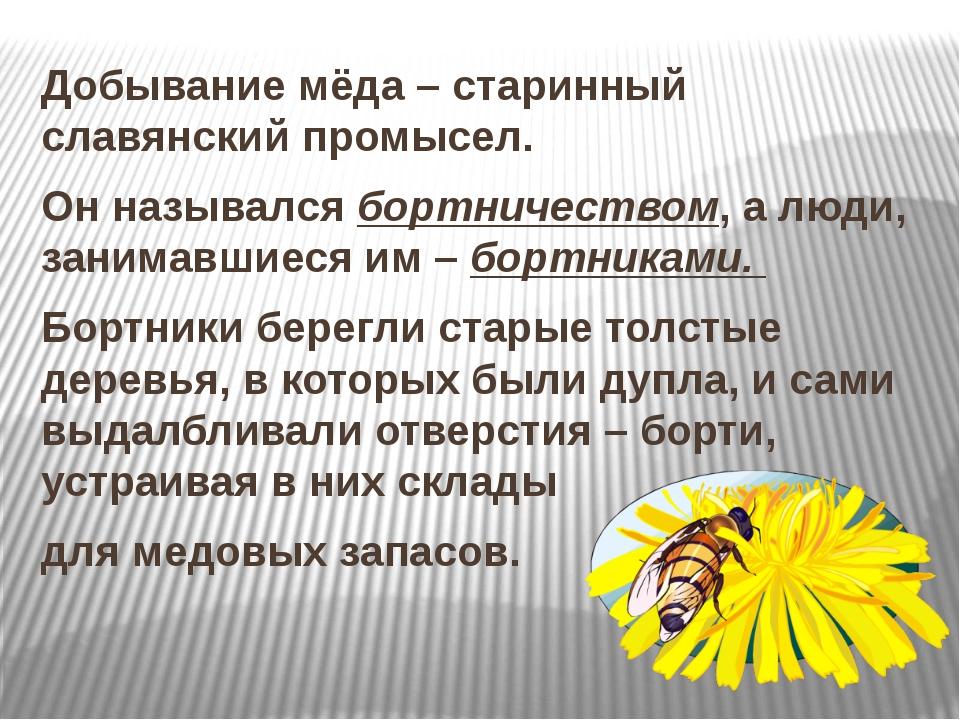 Добывание мёда – старинный славянский промысел. Он назывался бортничеством,...