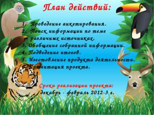 План действий: Сроки реализации проекта: декабрь - февраль 2012-3 г. Проведен