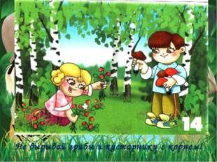 Не вырывай грибы и кустарники с корнем!