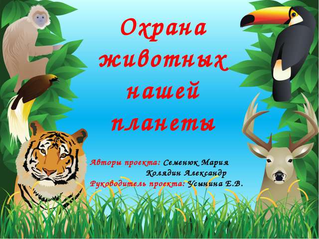 Охрана животных нашей планеты Авторы проекта: Семенюк Мария Колядин Александр...
