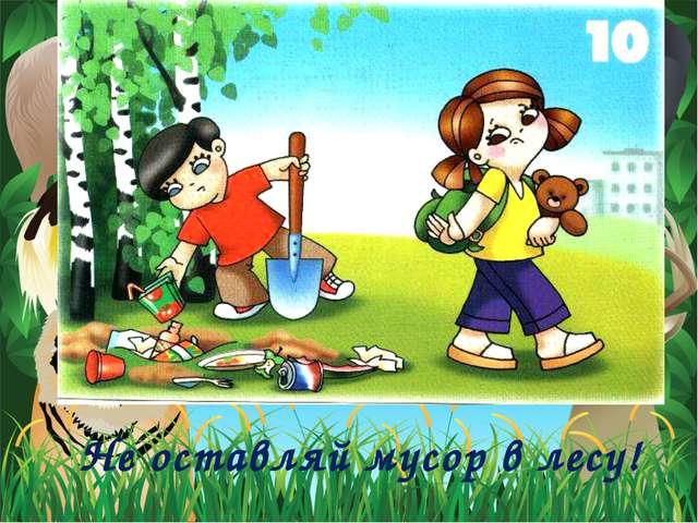 Не оставляй мусор в лесу!