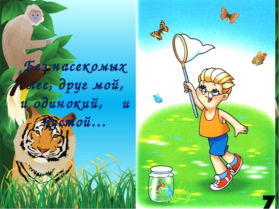 Без насекомых лес, друг мой, и одинокий, и пустой…