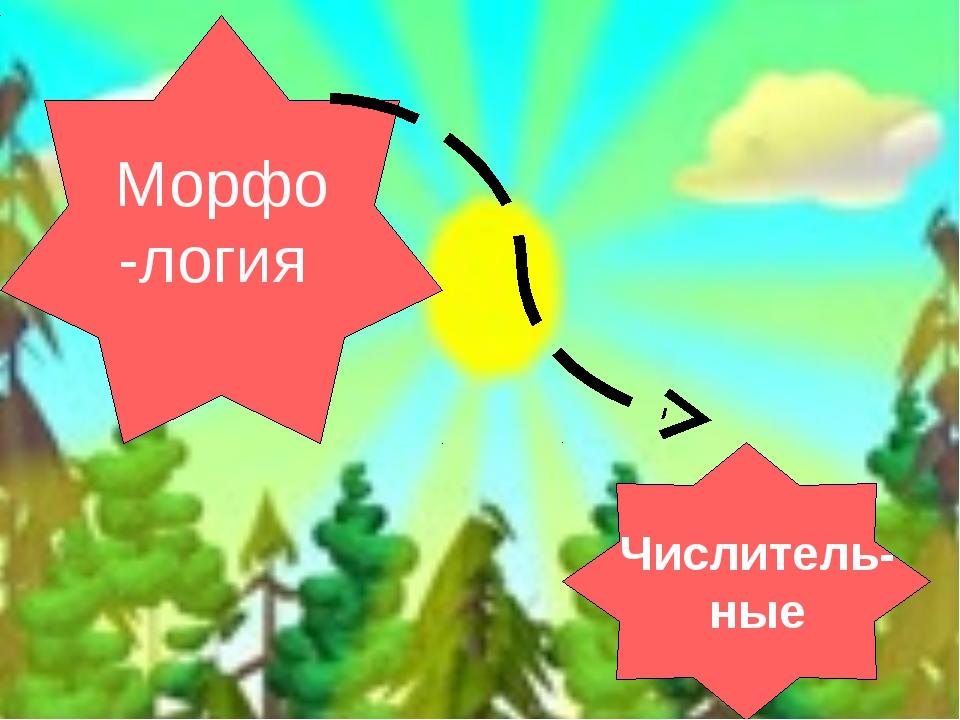 Морфо -логия Числитель- ные