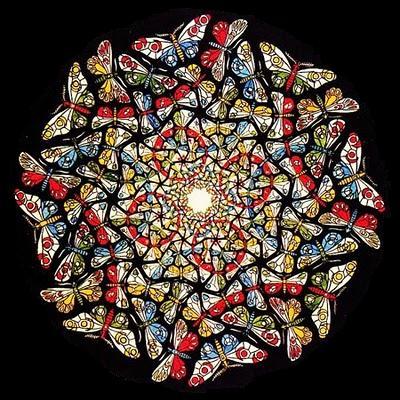Копия Butterflies.jpg