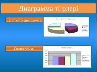 Дөңгелек диаграмма Гистограмма Диаграмма түрлері
