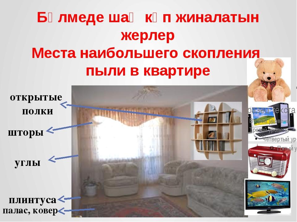 Бөлмеде шаң көп жиналатын жерлер Места наибольшего скопления пыли в квартире...