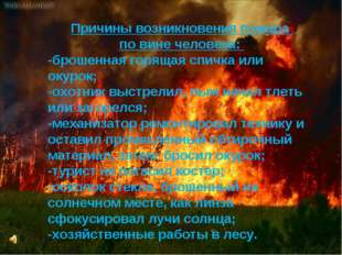 Причины возникновения пожара по вине человека: Причины возникновения пожара п