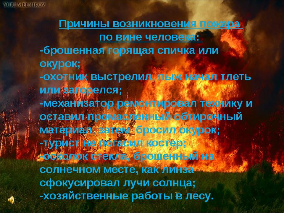 Причины возникновения пожара по вине человека: Причины возникновения пожара п...