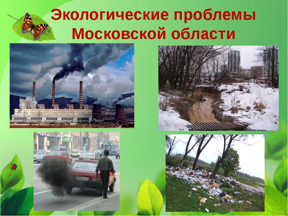 Экологические проблемы Московской области