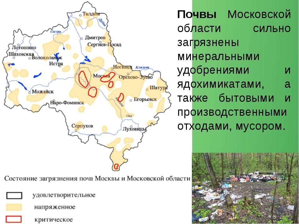 Почвы Московской области сильно загрязнены минеральными удобрениями и ядохими...
