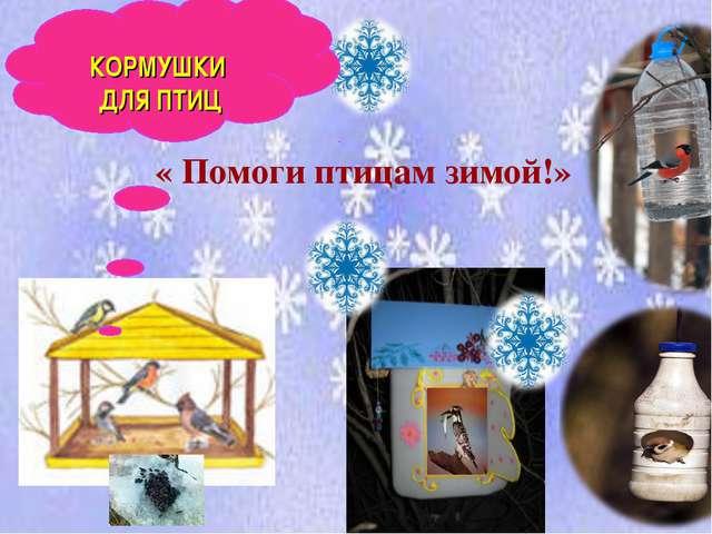 « Помоги птицам зимой!» КОРМУШКИ ДЛЯ ПТИЦ
