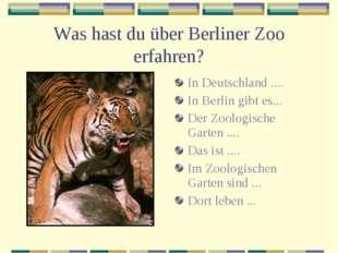 Was hast du über Berliner Zoo erfahren? In Deutschland .... In Berlin gibt es