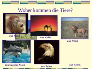 Woher kommen die Tiere? aus Afrika aus Afrika aus Afrika aus Afrika aus Europ