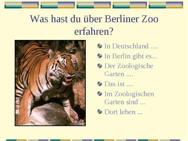 Was hast du über Berliner Zoo erfahren? In Deutschland .... In Berlin gibt es...