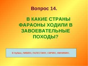 Вопрос 14. В КАКИЕ СТРАНЫ ФАРАОНЫ ХОДИЛИ В ЗАВОЕВАТЕЛЬНЫЕ ПОХОДЫ? В Нубию,