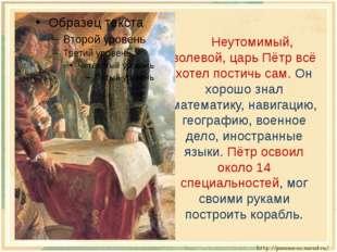 Неутомимый, волевой, царь Пётр всё хотел постичь сам. Он хорошо знал математ