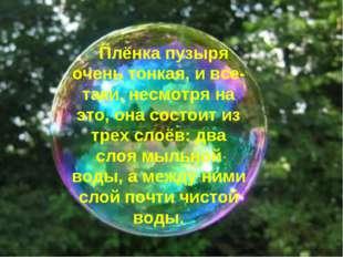 Плёнка пузыря очень тонкая, и все-таки, несмотря на это, она состоит из трех