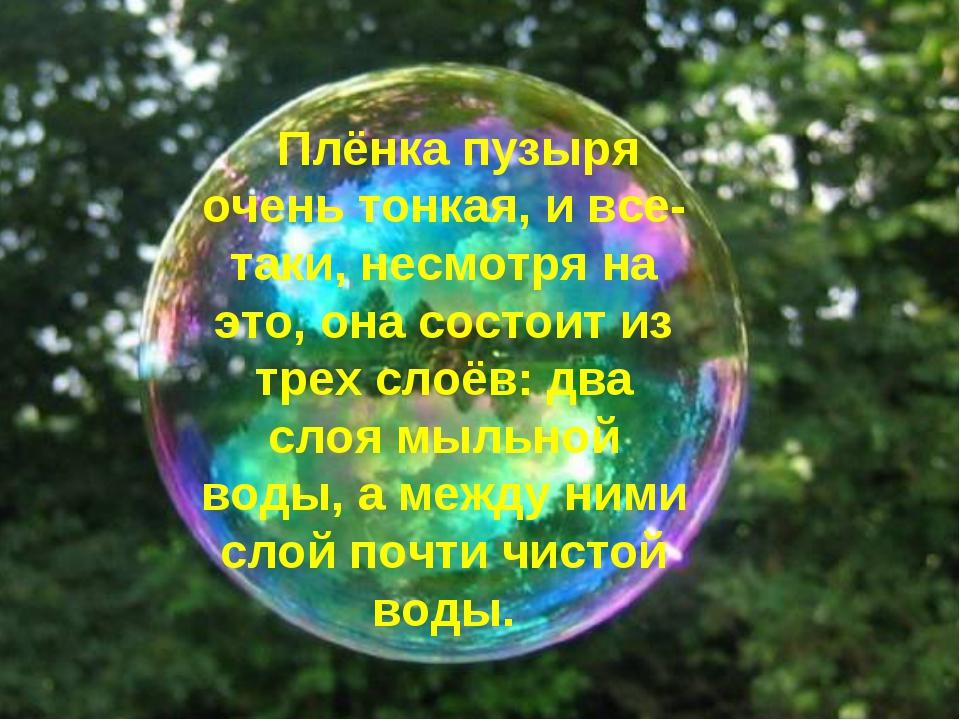 Плёнка пузыря очень тонкая, и все-таки, несмотря на это, она состоит из трех...